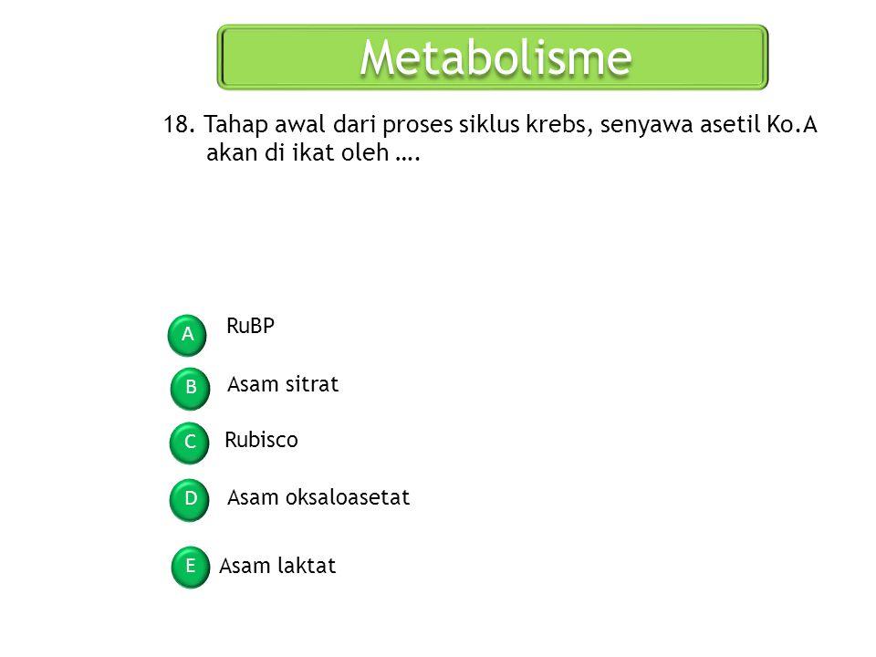 Metabolisme A B C D E 18. Tahap awal dari proses siklus krebs, senyawa asetil Ko.A akan di ikat oleh …. RuBP Asam sitrat Rubisco Asam oksaloasetat Asa