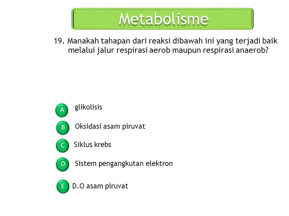 Metabolisme A B C D E 19. Manakah tahapan dari reaksi dibawah ini yang terjadi baik melalui jalur respirasi aerob maupun respirasi anaerob? glikolisis
