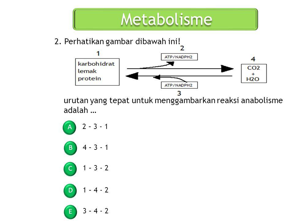 Metabolisme A B C D E 2. Perhatikan gambar dibawah ini! urutan yang tepat untuk menggambarkan reaksi anabolisme adalah … 2 – 3 - 1 3 – 4 - 2 1 – 3 - 2