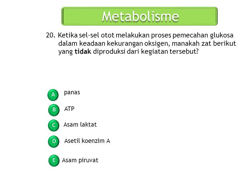Metabolisme A B C D E 20. Ketika sel-sel otot melakukan proses pemecahan glukosa dalam keadaan kekurangan oksigen, manakah zat berikut yang tidak dipr