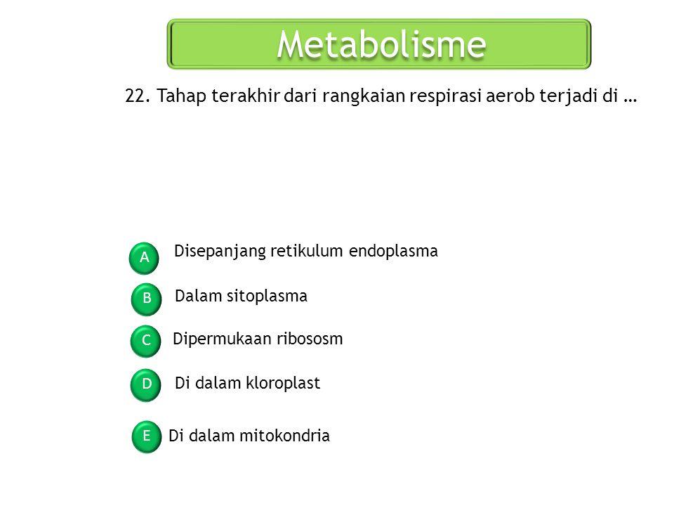 Metabolisme A B C D E 22. Tahap terakhir dari rangkaian respirasi aerob terjadi di … Disepanjang retikulum endoplasma Dalam sitoplasma Dipermukaan rib