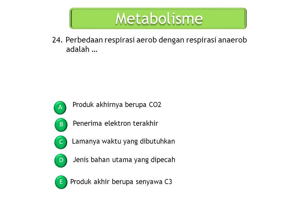 Metabolisme A B C D E 24. Perbedaan respirasi aerob dengan respirasi anaerob adalah … Produk akhirnya berupa CO2 Penerima elektron terakhir Lamanya wa