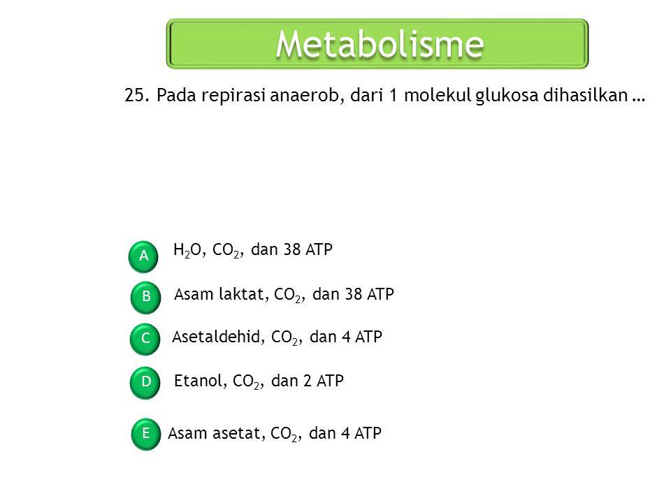 Metabolisme A B C D E 25. Pada repirasi anaerob, dari 1 molekul glukosa dihasilkan … H 2 O, CO 2, dan 38 ATP Asam laktat, CO 2, dan 38 ATP Asetaldehid