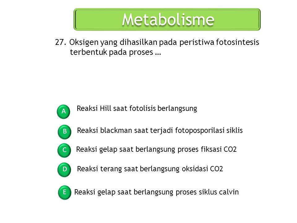 Metabolisme A B C D E 27. Oksigen yang dihasilkan pada peristiwa fotosintesis terbentuk pada proses … Reaksi Hill saat fotolisis berlangsung Reaksi bl