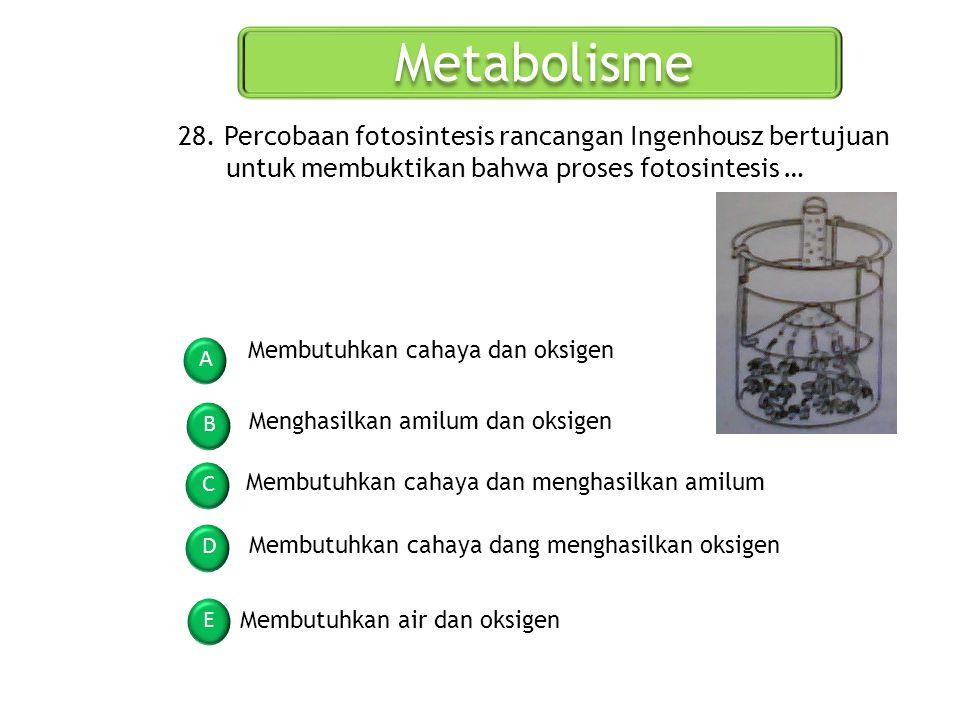 Metabolisme A B C D E 28. Percobaan fotosintesis rancangan Ingenhousz bertujuan untuk membuktikan bahwa proses fotosintesis … Membutuhkan cahaya dan o
