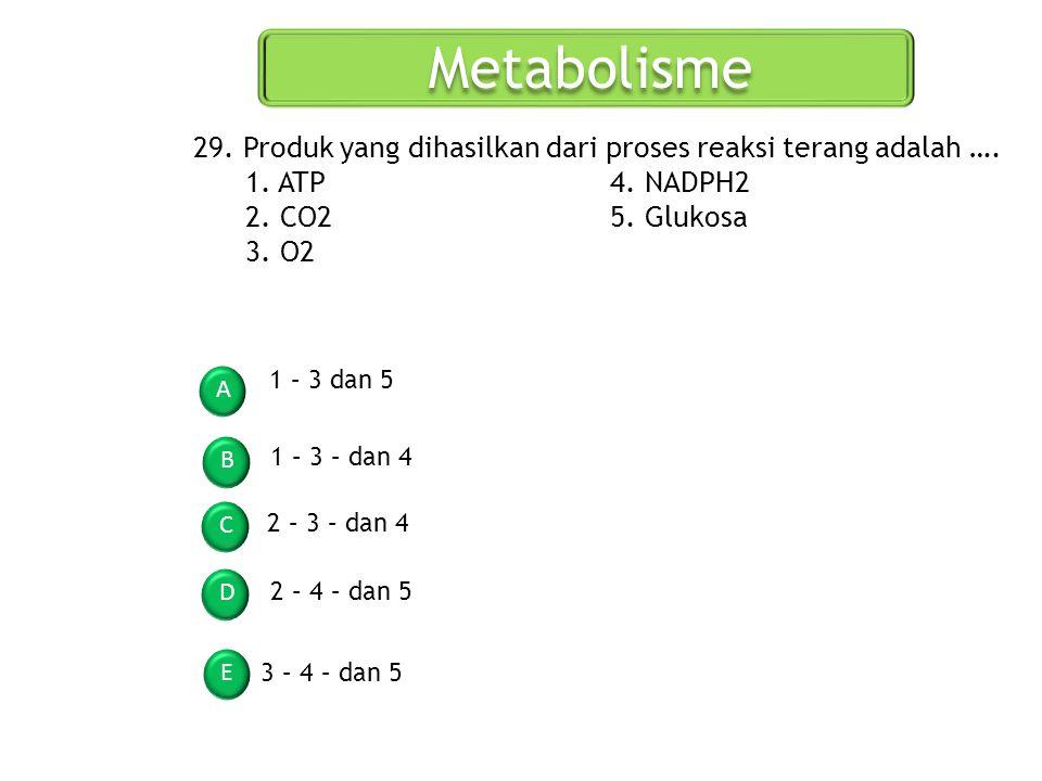 Metabolisme A B C D E 29. Produk yang dihasilkan dari proses reaksi terang adalah …. 1. ATP4. NADPH2 2. CO25. Glukosa 3. O2 1 – 3 dan 5 1 – 3 – dan 4