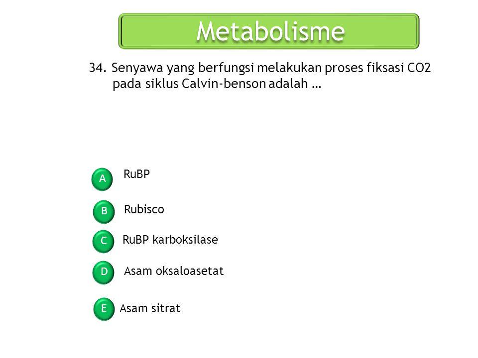 Metabolisme A B C D E 34. Senyawa yang berfungsi melakukan proses fiksasi CO2 pada siklus Calvin-benson adalah … RuBP Rubisco RuBP karboksilase Asam o