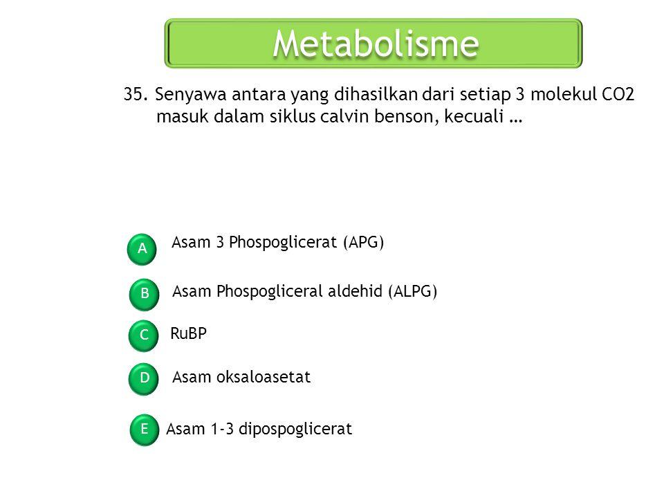 Metabolisme A B C D E 35. Senyawa antara yang dihasilkan dari setiap 3 molekul CO2 masuk dalam siklus calvin benson, kecuali … Asam 3 Phospoglicerat (