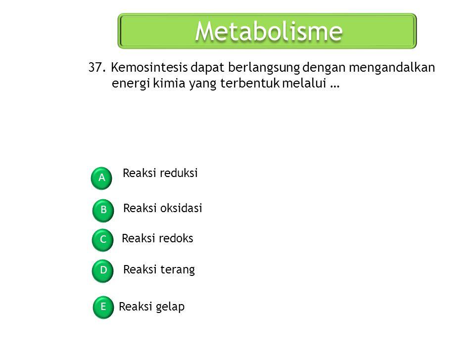 Metabolisme A B C D E 37. Kemosintesis dapat berlangsung dengan mengandalkan energi kimia yang terbentuk melalui … Reaksi reduksi Reaksi oksidasi Reak