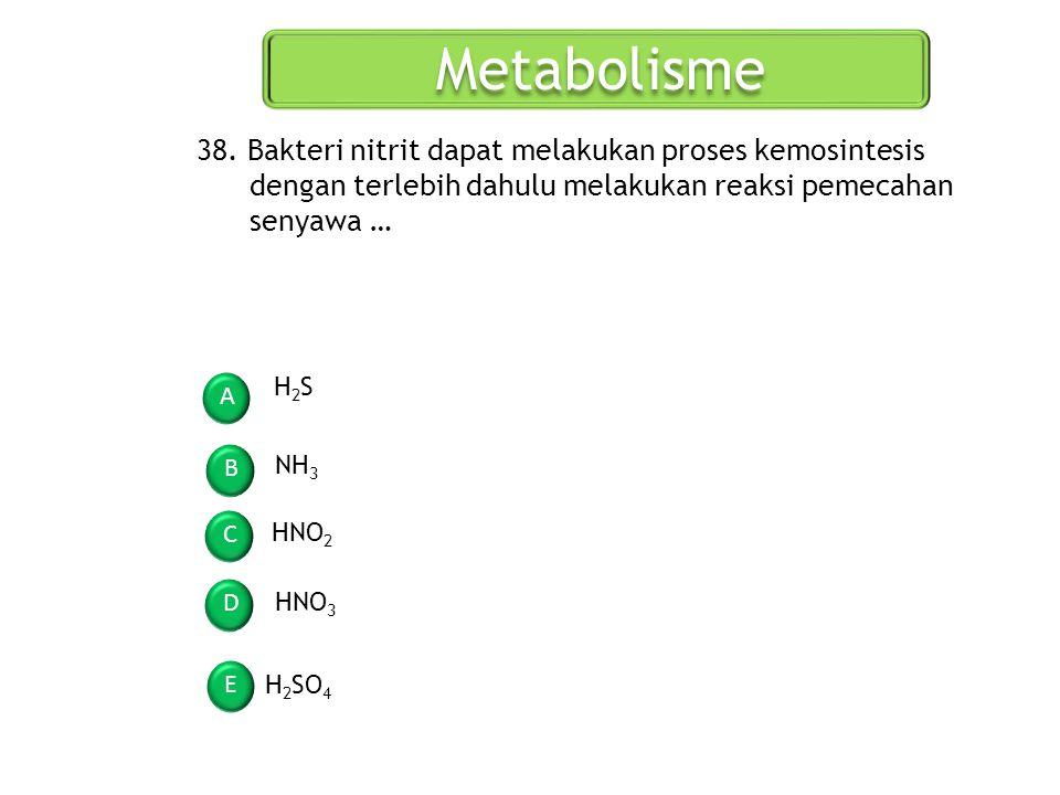 Metabolisme A B C D E 38. Bakteri nitrit dapat melakukan proses kemosintesis dengan terlebih dahulu melakukan reaksi pemecahan senyawa … H2SH2S NH 3 H