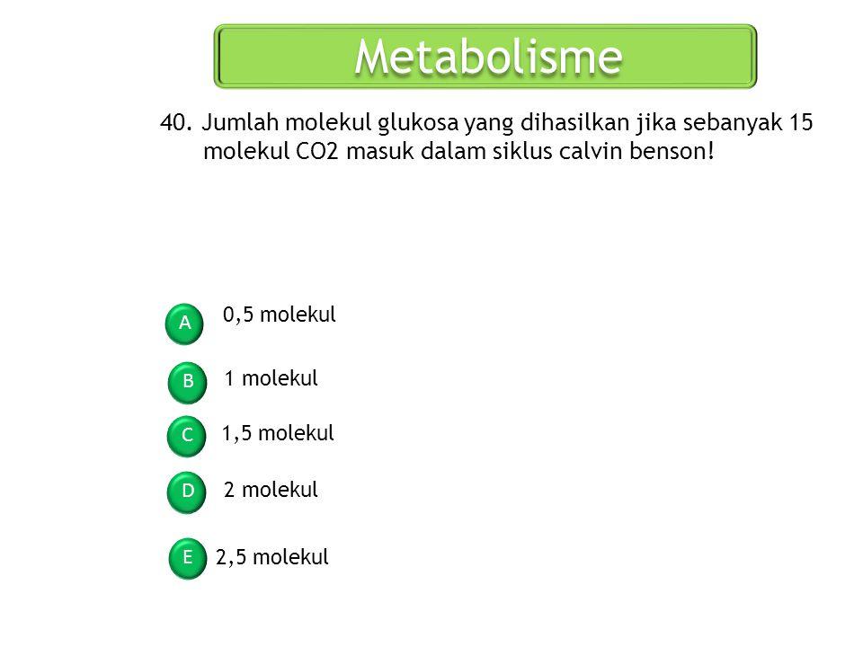 Metabolisme A B C D E 40. Jumlah molekul glukosa yang dihasilkan jika sebanyak 15 molekul CO2 masuk dalam siklus calvin benson! 0,5 molekul 1 molekul