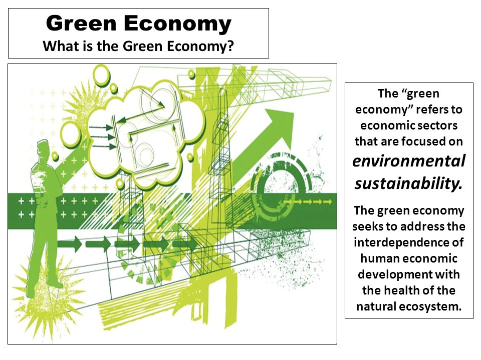 "Green Economy What is the Green Economy? The ""green economy"" refers to economic sectors that are focused on environmental sustainability. The green ec"