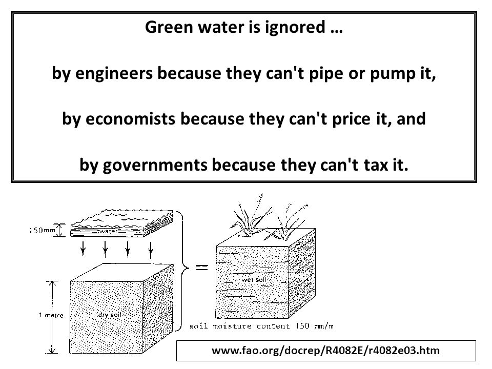 Green water is ignored … by engineers because they can't pipe or pump it, by economists because they can't price it, and by governments because they c