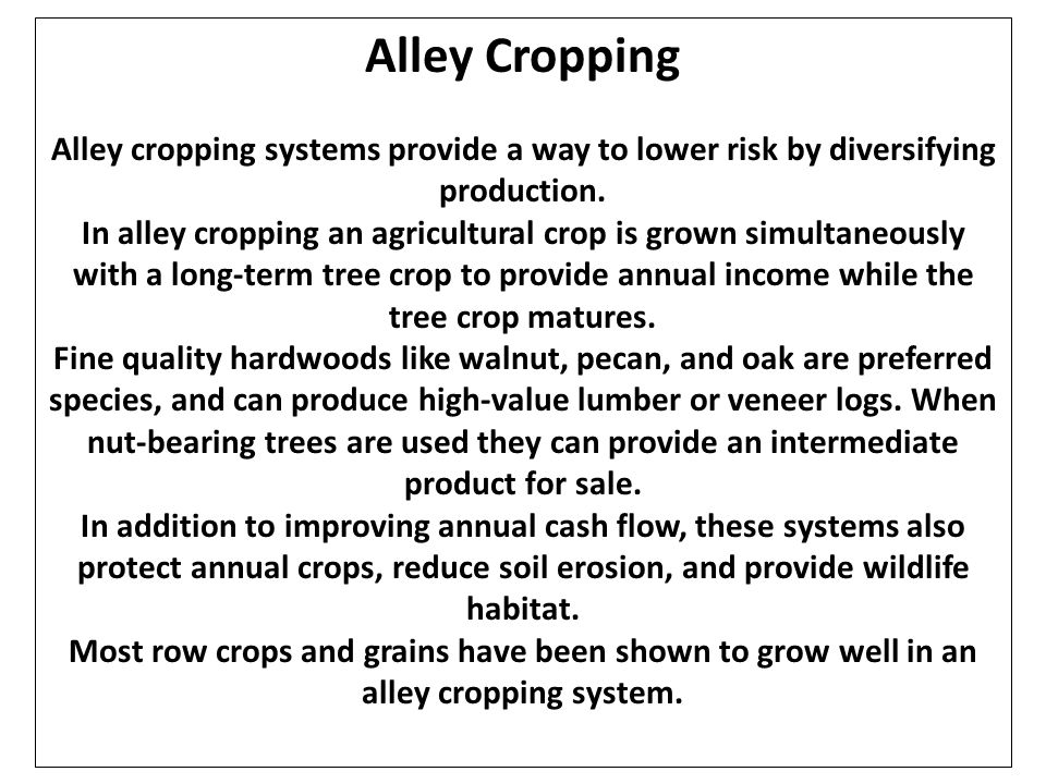 Alley Cropping Alley cropping systems provide a way to lower risk by diversifying production. In alley cropping an agricultural crop is grown simultan