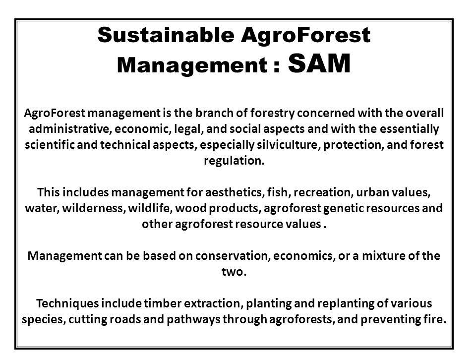 Sustainable AgroForest Management : SAM AgroForest management is the branch of forestry concerned with the overall administrative, economic, legal, and social aspects and with the essentially scientific and technical aspects, especially silviculture, protection, and forest regulation.