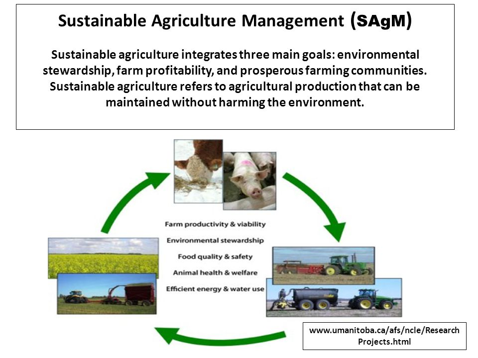 Sustainable Agriculture Management ( SAgM ) Sustainable agriculture integrates three main goals: environmental stewardship, farm profitability, and pr