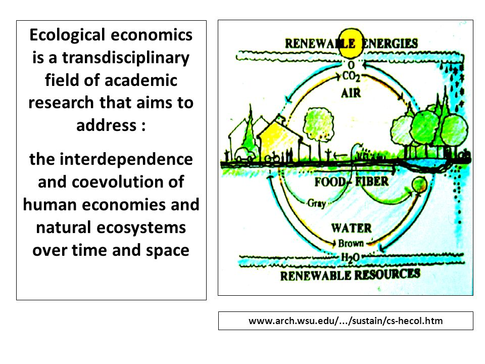 Ecological economics is a transdisciplinary field of academic research that aims to address : the interdependence and coevolution of human economies a