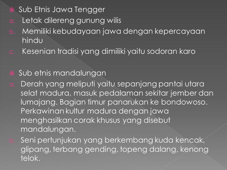  Sub Etnis Jawa Tengger a. Letak dilereng gunung wilis b. Memiliki kebudayaan jawa dengan kepercayaan hindu c. Kesenian tradisi yang dimiliki yaitu s