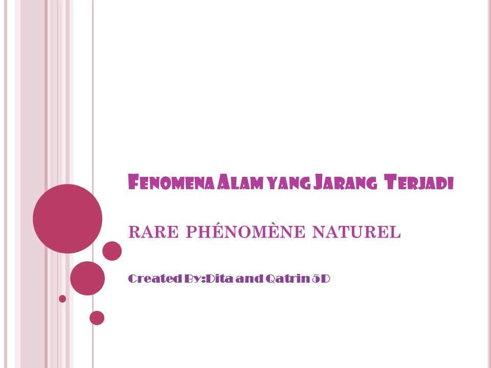 F ENOMENA A LAM YANG J ARANG T ERJADI RARE PHÉNOMÈNE NATUREL Created By:Dita and Qatrin 5D