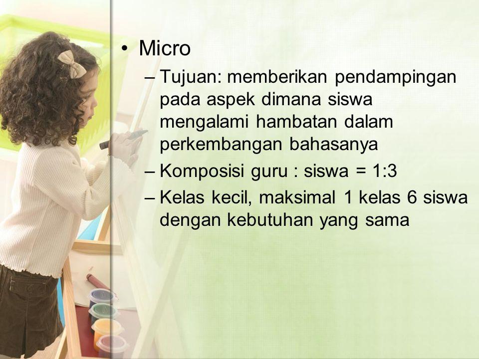 Micro –Tujuan: memberikan pendampingan pada aspek dimana siswa mengalami hambatan dalam perkembangan bahasanya –Komposisi guru : siswa = 1:3 –Kelas kecil, maksimal 1 kelas 6 siswa dengan kebutuhan yang sama