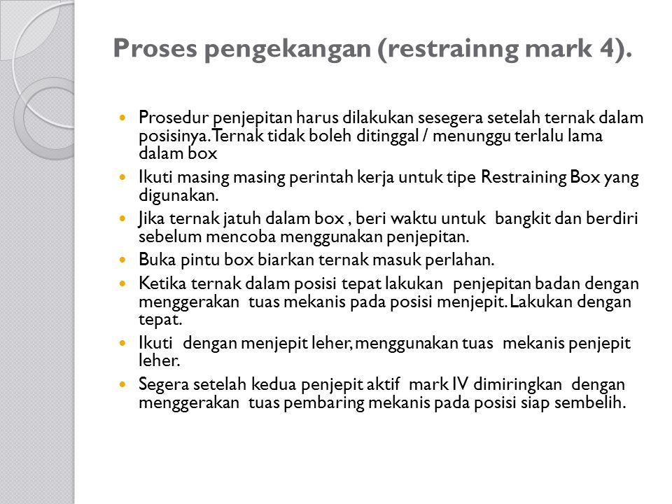 Proses pengekangan (restrainng mark 4). Prosedur penjepitan harus dilakukan sesegera setelah ternak dalam posisinya. Ternak tidak boleh ditinggal / me