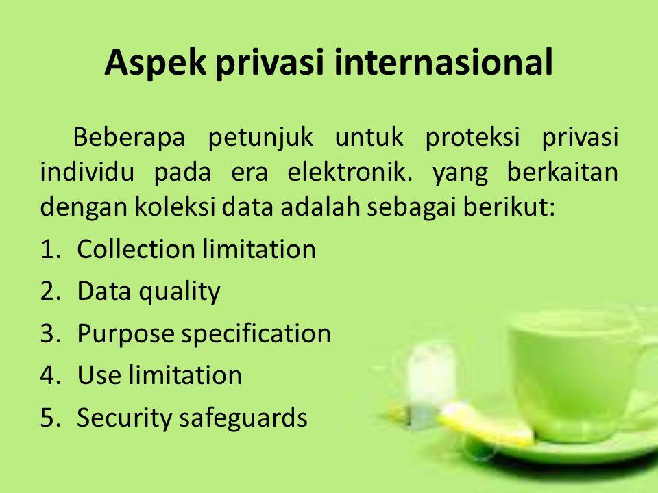 Aspek privasi internasional Beberapa petunjuk untuk proteksi privasi individu pada era elektronik.