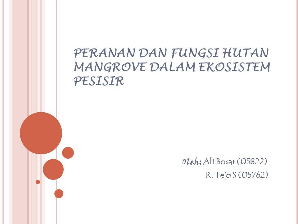 PERANAN DAN FUNGSI HUTAN MANGROVE DALAM EKOSISTEM PESISIR Oleh: Ali Bosar (05822) R. Tejo S (05762)