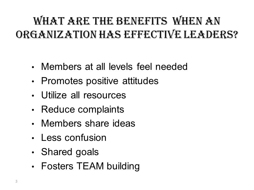 2 Concern: BECOMING AN EFFECTIVE LEADER