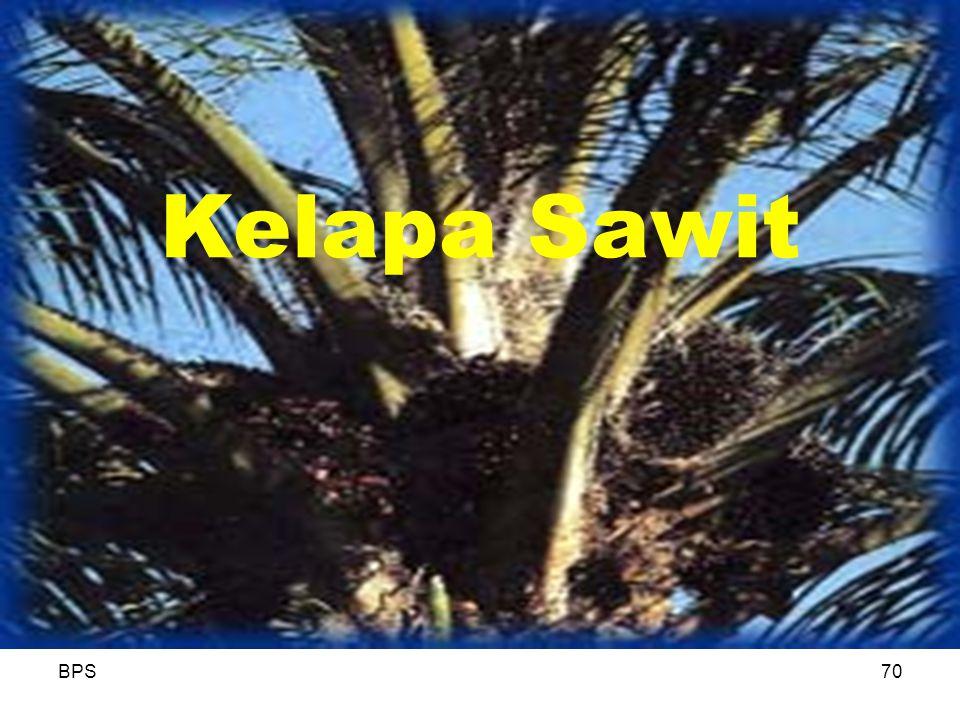 BPS70 Kelapa Sawit