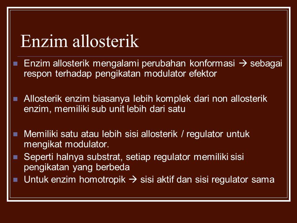 Enzim allosterik Enzim allosterik mengalami perubahan konformasi  sebagai respon terhadap pengikatan modulator efektor Allosterik enzim biasanya lebi