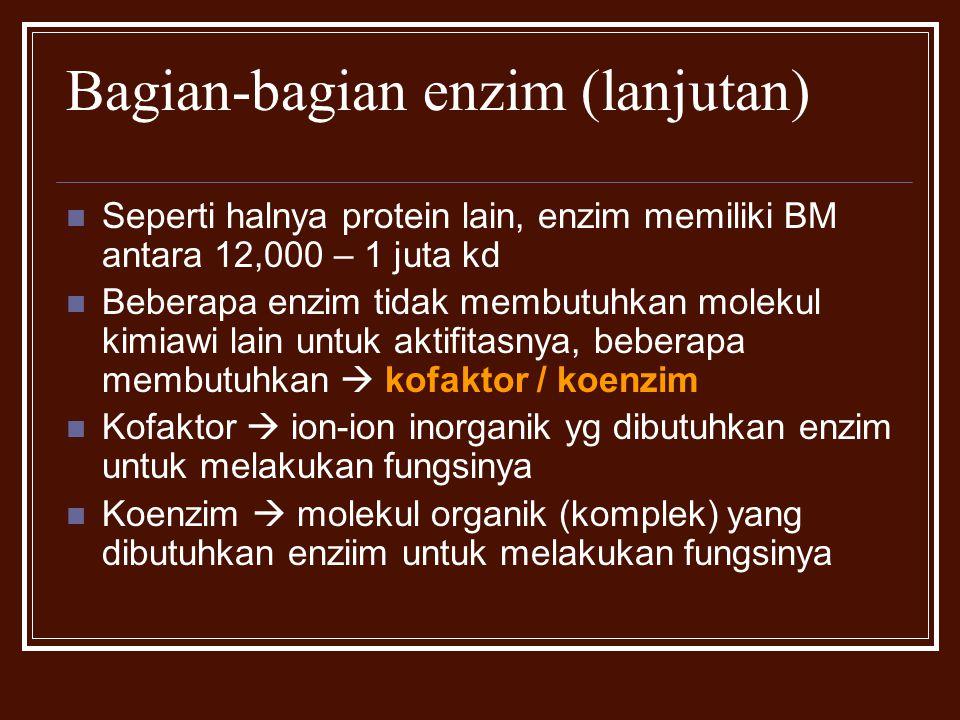 Bagian-bagian enzim (lanjutan) Seperti halnya protein lain, enzim memiliki BM antara 12,000 – 1 juta kd Beberapa enzim tidak membutuhkan molekul kimia