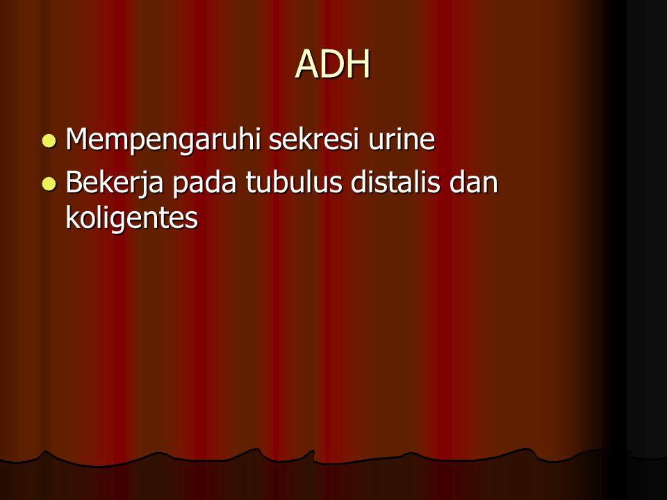 ADH Mempengaruhi sekresi urine Mempengaruhi sekresi urine Bekerja pada tubulus distalis dan koligentes Bekerja pada tubulus distalis dan koligentes
