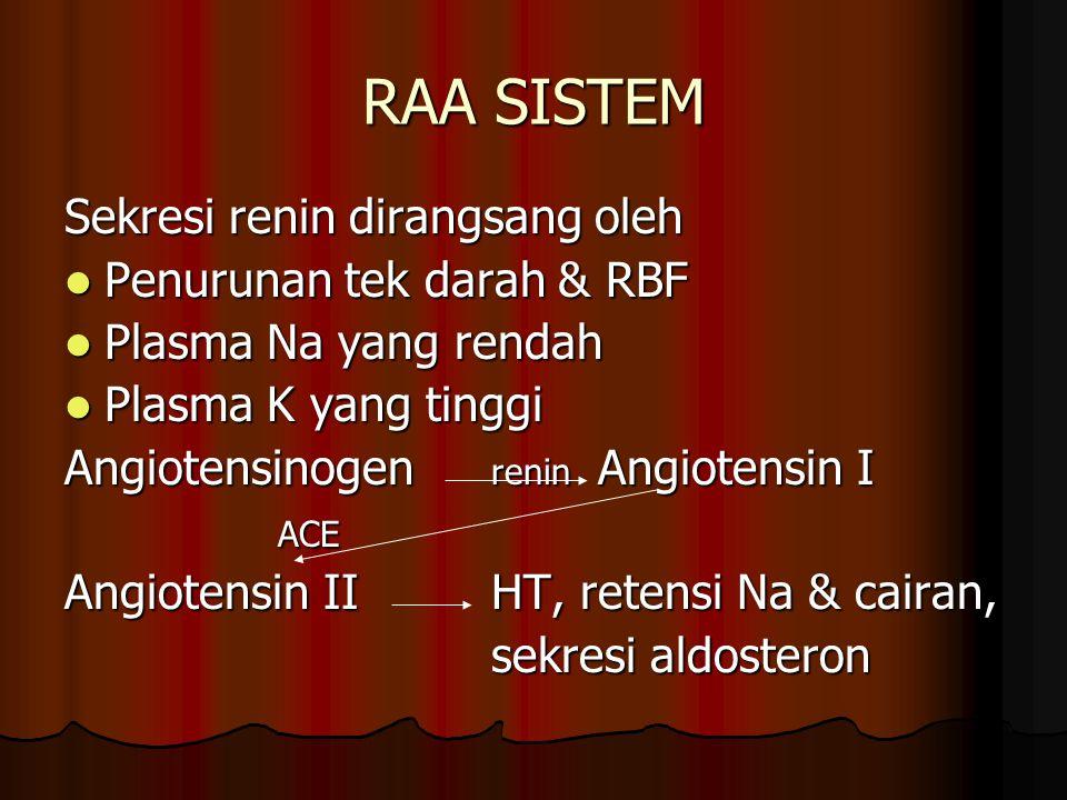 RAA SISTEM Sekresi renin dirangsang oleh Penurunan tek darah & RBF Penurunan tek darah & RBF Plasma Na yang rendah Plasma Na yang rendah Plasma K yang tinggi Plasma K yang tinggi Angiotensinogen renin Angiotensin I ACE Angiotensin II HT, retensi Na & cairan, sekresi aldosteron