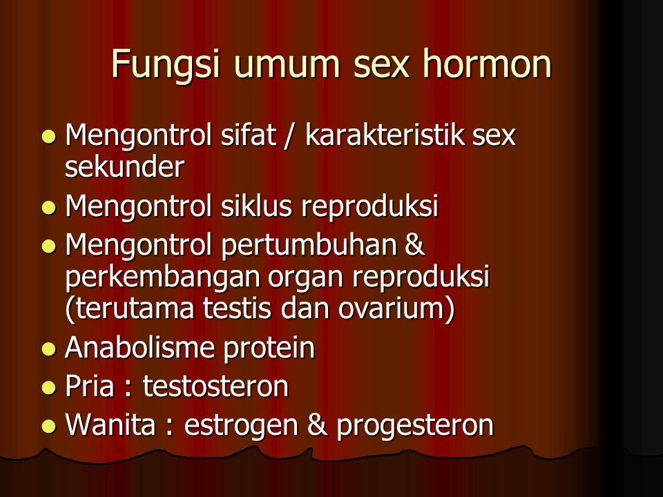 Fungsi umum sex hormon Mengontrol sifat / karakteristik sex sekunder Mengontrol sifat / karakteristik sex sekunder Mengontrol siklus reproduksi Mengontrol siklus reproduksi Mengontrol pertumbuhan & perkembangan organ reproduksi (terutama testis dan ovarium) Mengontrol pertumbuhan & perkembangan organ reproduksi (terutama testis dan ovarium) Anabolisme protein Anabolisme protein Pria : testosteron Pria : testosteron Wanita : estrogen & progesteron Wanita : estrogen & progesteron