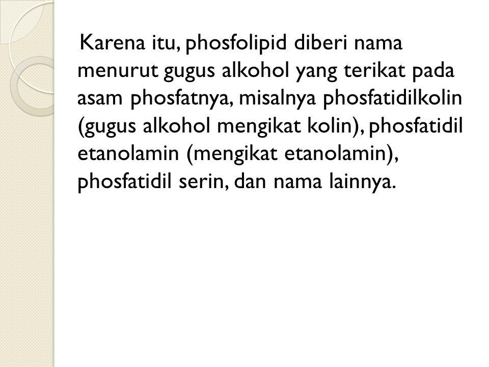 Karena itu, phosfolipid diberi nama menurut gugus alkohol yang terikat pada asam phosfatnya, misalnya phosfatidilkolin (gugus alkohol mengikat kolin),