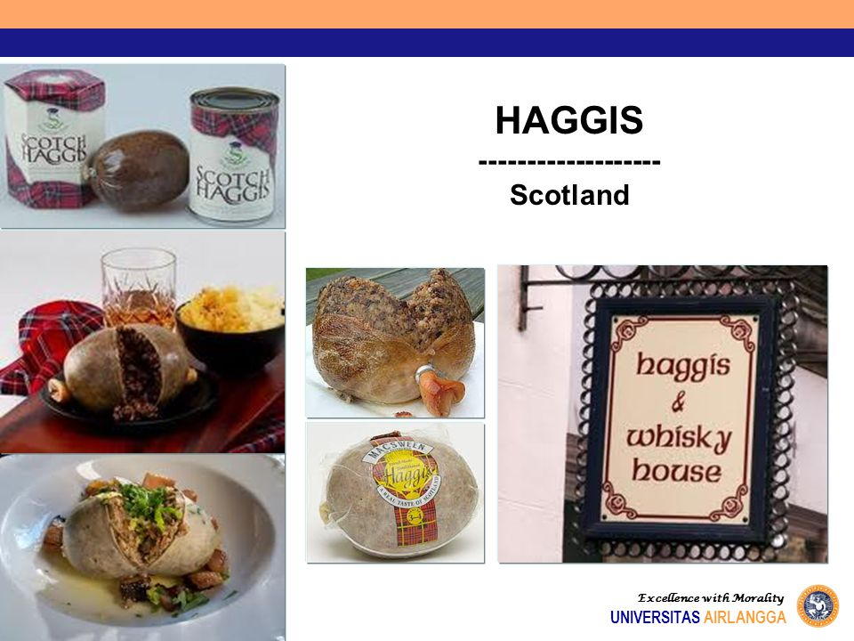 Excellence with Morality UNIVERSITAS AIRLANGGA HAGGIS ------------------- Scotland