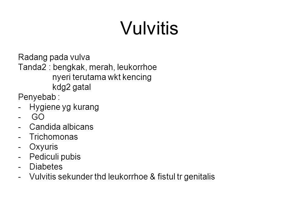 Vulvitis Radang pada vulva Tanda2 : bengkak, merah, leukorrhoe nyeri terutama wkt kencing kdg2 gatal Penyebab : -Hygiene yg kurang - GO -Candida albicans -Trichomonas -Oxyuris -Pediculi pubis -Diabetes -Vulvitis sekunder thd leukorrhoe & fistul tr genitalis