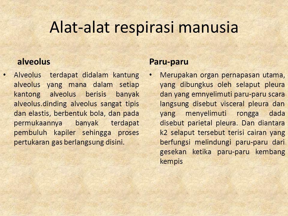 Kelainan sistem respirasi Pada manusia