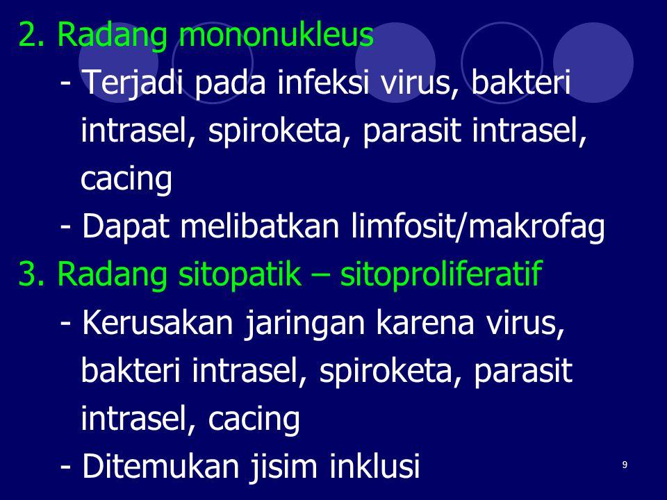 9 2. Radang mononukleus - Terjadi pada infeksi virus, bakteri intrasel, spiroketa, parasit intrasel, cacing - Dapat melibatkan limfosit/makrofag 3. Ra