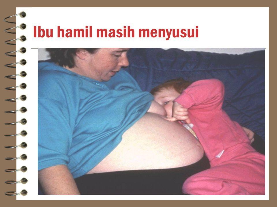 Ibu hamil masih menyusui