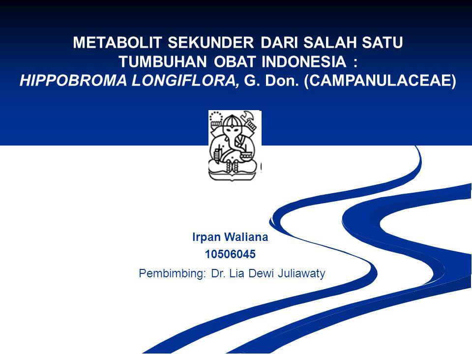 METABOLIT SEKUNDER DARI SALAH SATU TUMBUHAN OBAT INDONESIA : HIPPOBROMA LONGIFLORA, G. Don. (CAMPANULACEAE) Irpan Waliana 10506045 Pembimbing: Dr. Lia
