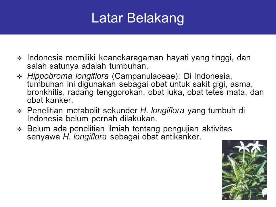 Latar Belakang  Indonesia memiliki keanekaragaman hayati yang tinggi, dan salah satunya adalah tumbuhan.  Hippobroma longiflora (Campanulaceae): Di