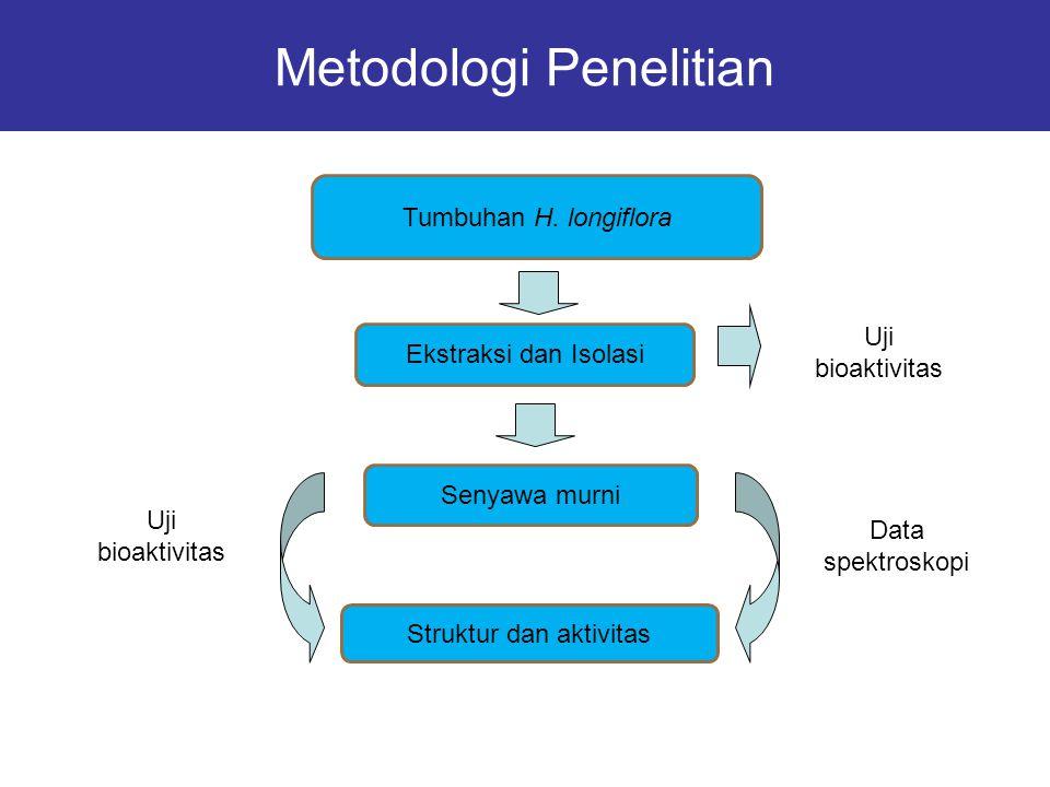 Metodologi Penelitian Tumbuhan H. longiflora Ekstraksi dan Isolasi Senyawa murni Data spektroskopi Struktur dan aktivitas Uji bioaktivitas Uji bioakti