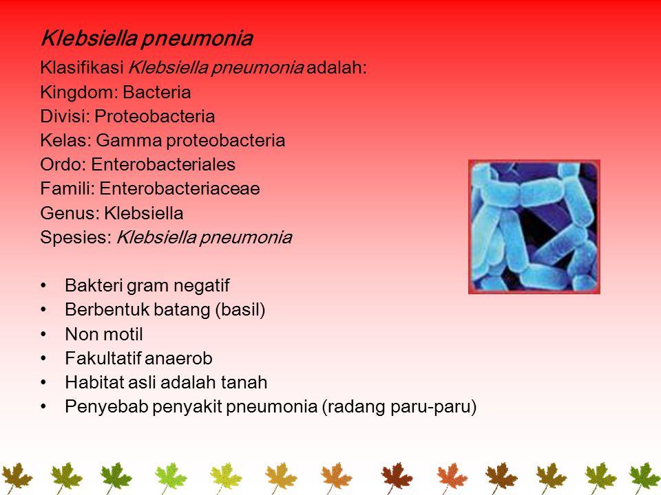 Klebsiella pneumonia Klasifikasi Klebsiella pneumonia adalah: Kingdom: Bacteria Divisi: Proteobacteria Kelas: Gamma proteobacteria Ordo: Enterobacteriales Famili: Enterobacteriaceae Genus: Klebsiella Spesies: Klebsiella pneumonia Bakteri gram negatif Berbentuk batang (basil) Non motil Fakultatif anaerob Habitat asli adalah tanah Penyebab penyakit pneumonia (radang paru-paru)