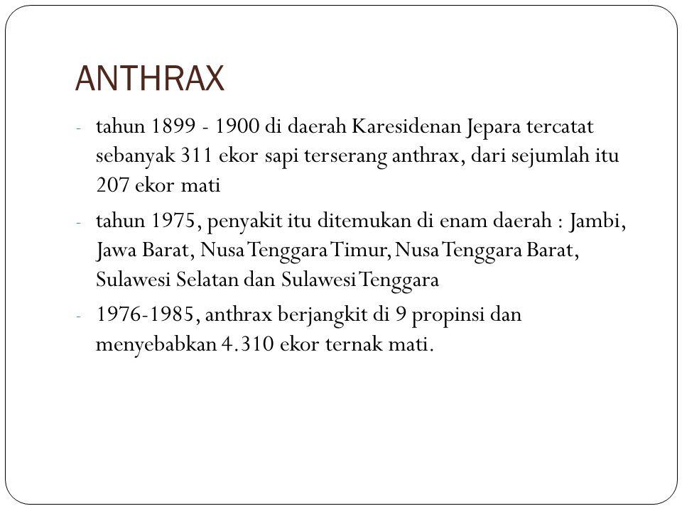 ANTHRAX - tahun 1899 - 1900 di daerah Karesidenan Jepara tercatat sebanyak 311 ekor sapi terserang anthrax, dari sejumlah itu 207 ekor mati - tahun 19