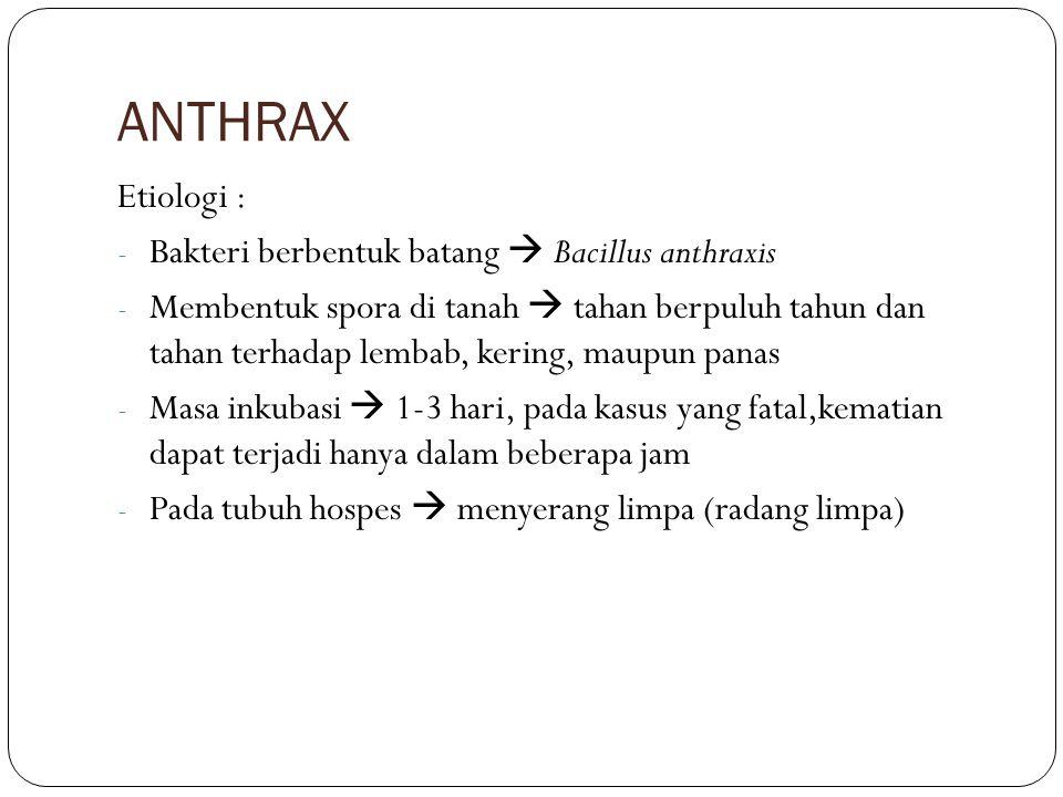 ANTHRAX Etiologi : - Bakteri berbentuk batang  Bacillus anthraxis - Membentuk spora di tanah  tahan berpuluh tahun dan tahan terhadap lembab, kering