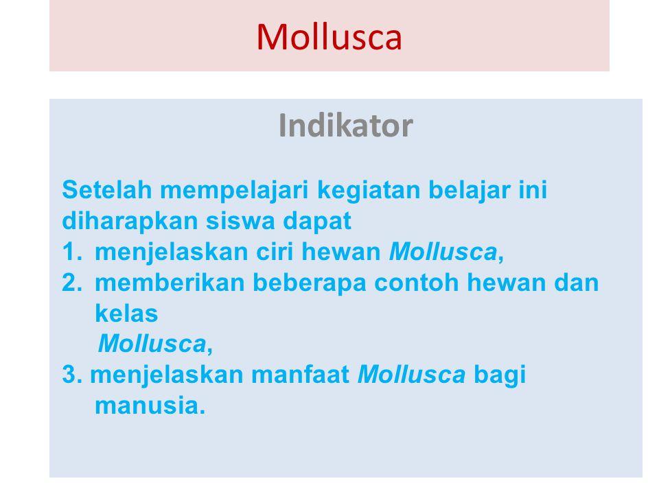 Mollusca Indikator Setelah mempelajari kegiatan belajar ini diharapkan siswa dapat 1.menjelaskan ciri hewan Mollusca, 2.memberikan beberapa contoh hew