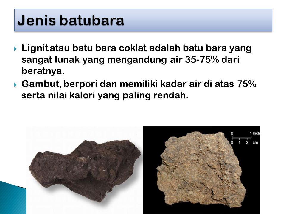  Lignit atau batu bara coklat adalah batu bara yang sangat lunak yang mengandung air 35-75% dari beratnya.  Gambut, berpori dan memiliki kadar air d