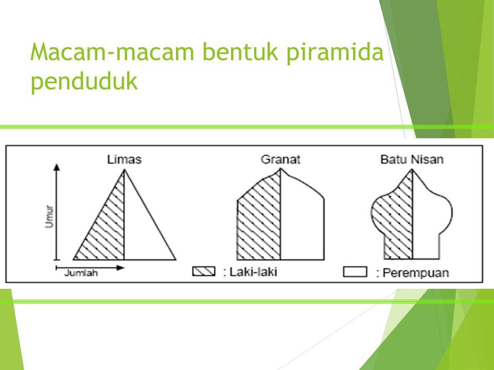 Macam-macam bentuk piramida penduduk