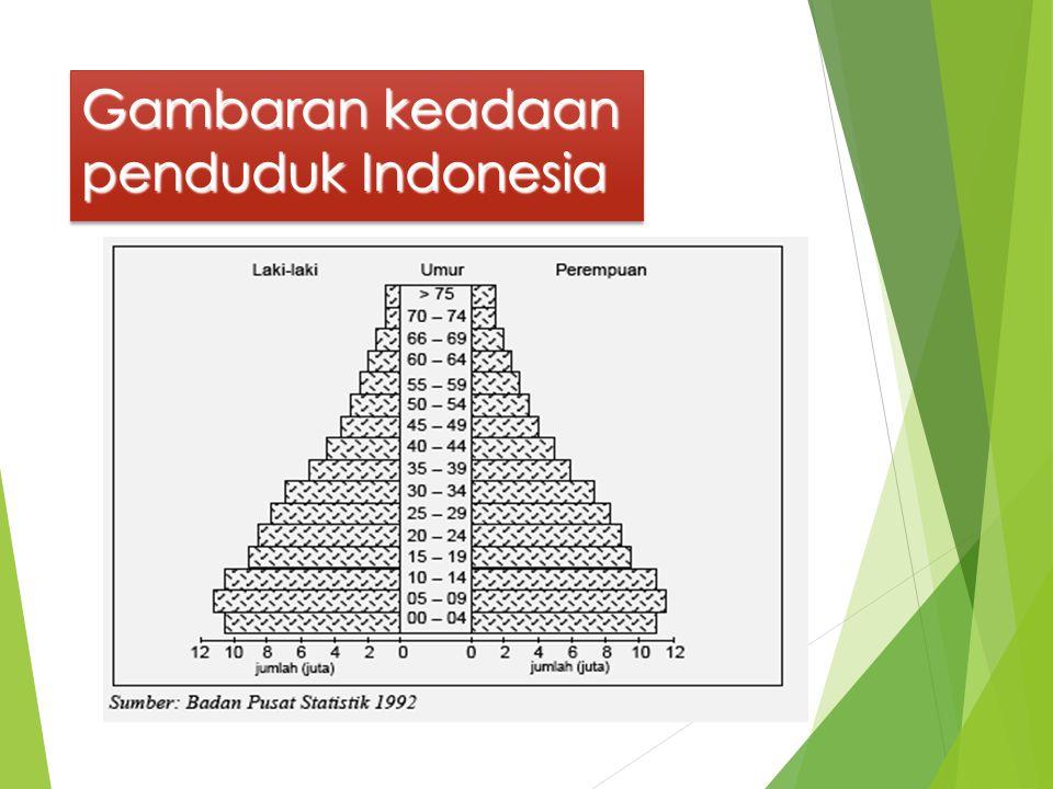 Gambaran keadaan penduduk Indonesia